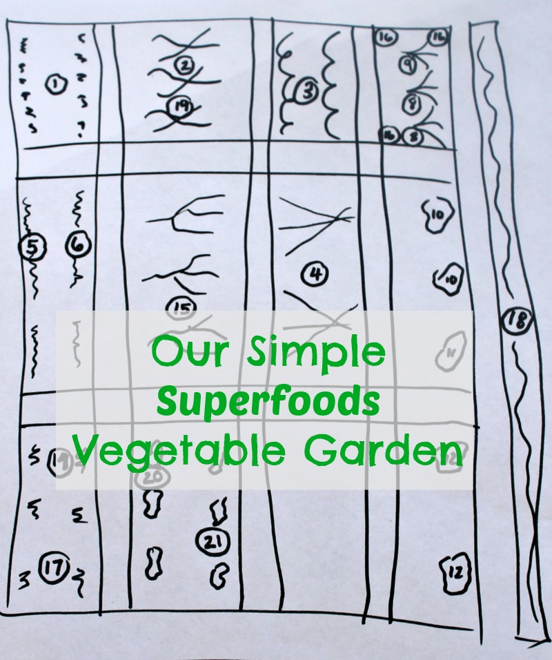 Our vegetable garden layout and simple plan!