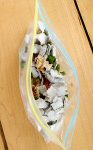 Make a Sandwich Bag Compost