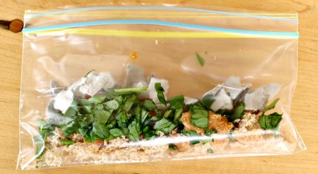 compost Experiment