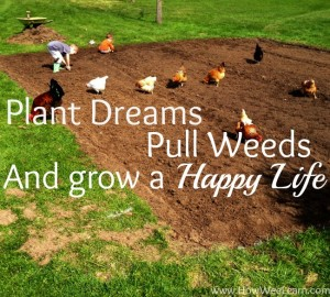 plant dreams, lovely spring garden quote