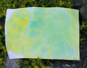 Wet-on-wet Watercolour Painting {A photo on Friday}