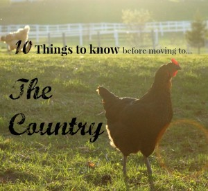 10 Things I wish I knew before moving to the country …