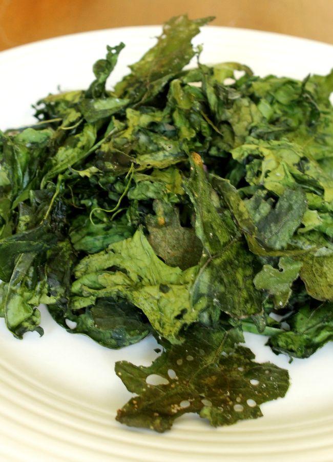 july garden kale chips
