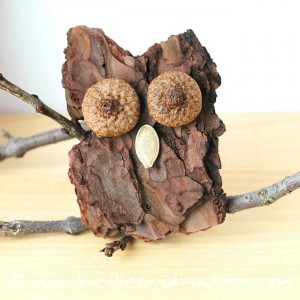 Fall crafts for kids - bark owl