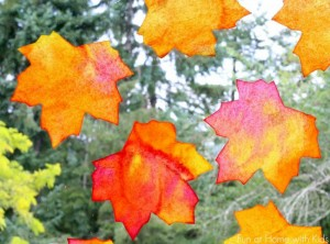 Fall crafts for kids - fall leaf sun catchers