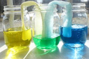 Science experiments for kids - walking water