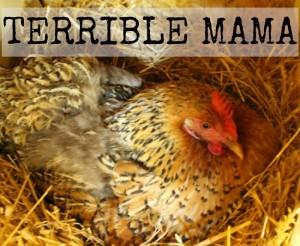 Sometimes a Mama LIES …