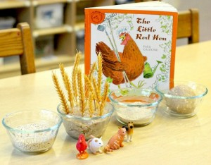 Farm theme activities - Little Red Hen sensory retelling