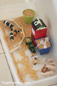Farm theme activities - corn sensory play