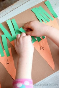 Farm theme activities - counting carrots
