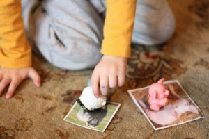 Farm theme activities - matching animals to pictures