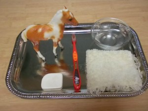 Farm theme activities - wash the horse Montessori tray