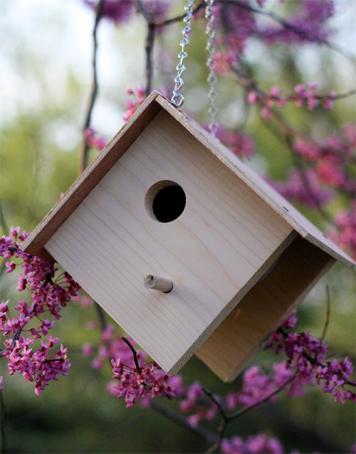 Woodworking projects for kids - birdhouse