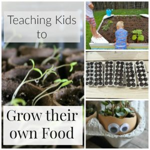 Garden Fun: Teaching Kids to Grow their Own Food