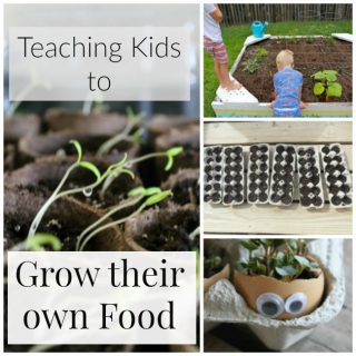 These are such fun garden activities for kids! Teaching kids to grow their own food is rather important