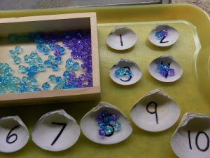 number summer learning - pearls in shells