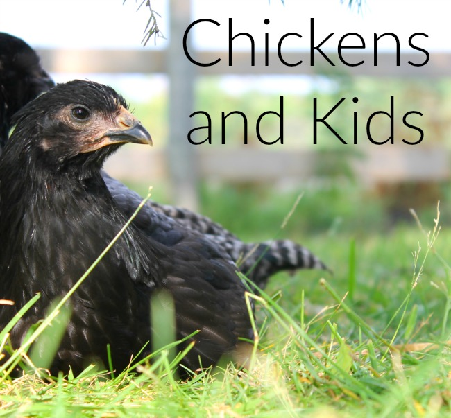 Have you ever thought of raising chickens? THere are some fabulous benefits, especially if you have kids!