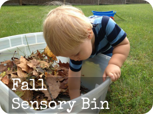 Fall leaves craft - fall sensory bin
