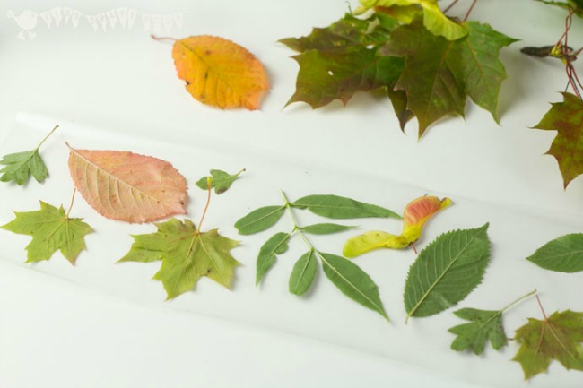 Fall leaves craft - leaf luminaries