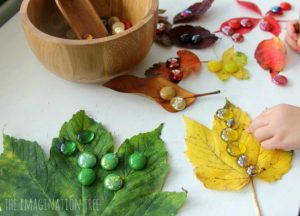Fall leaves craft - sorting by color