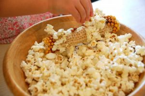 Fall science experiments - corncob popcorn