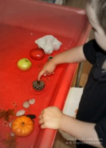 Fall science experiments - fall sink and float