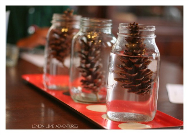 Fall science experiments - why do pine cones close