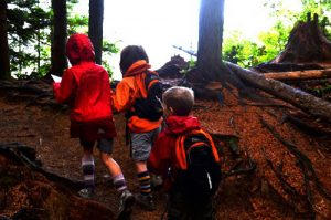 Forest Kindergarten - Letterboxing