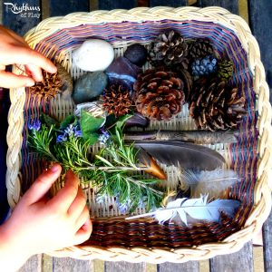 Forest Kindergarten - natural sensory bin