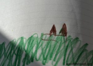 Forest Kindergarten - nature journals