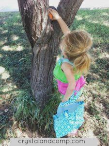 Halloween games for kids - pumpkin hide and seek