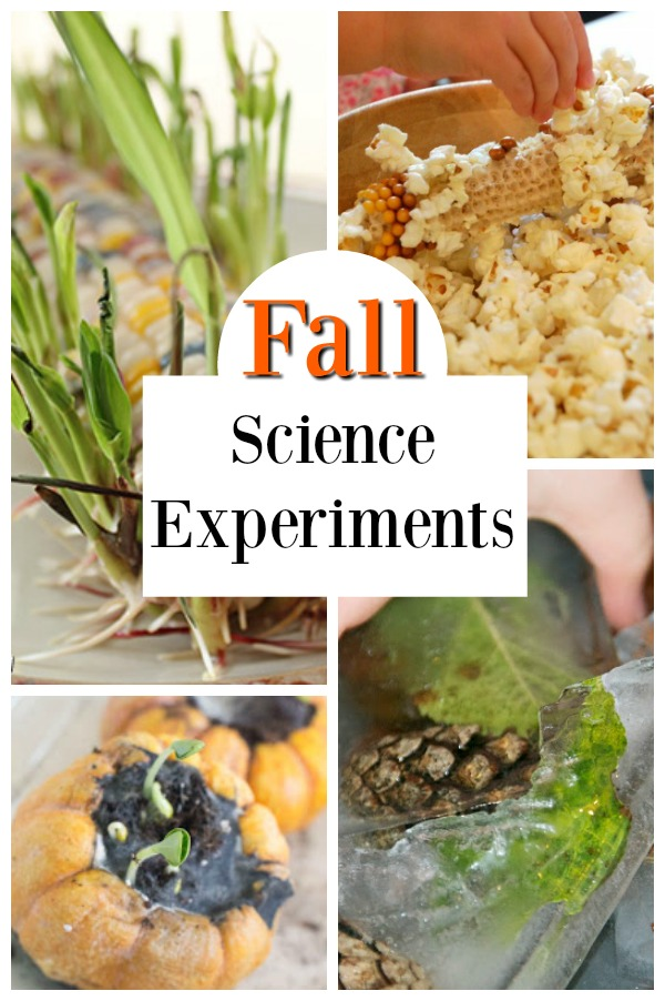 Awesome fall science experiments for kids! Fabulous STEM and STEAM ideas for the Autumn. #science #stem #steam #experiments #fall #autumn #preschool