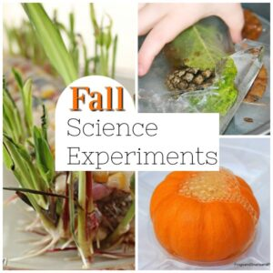 Fabulous Fall Science Experiments