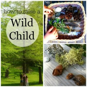 These are great ideas to get the kids outside and exploring nature. Perfect for forest school and forest Kindergarten too.