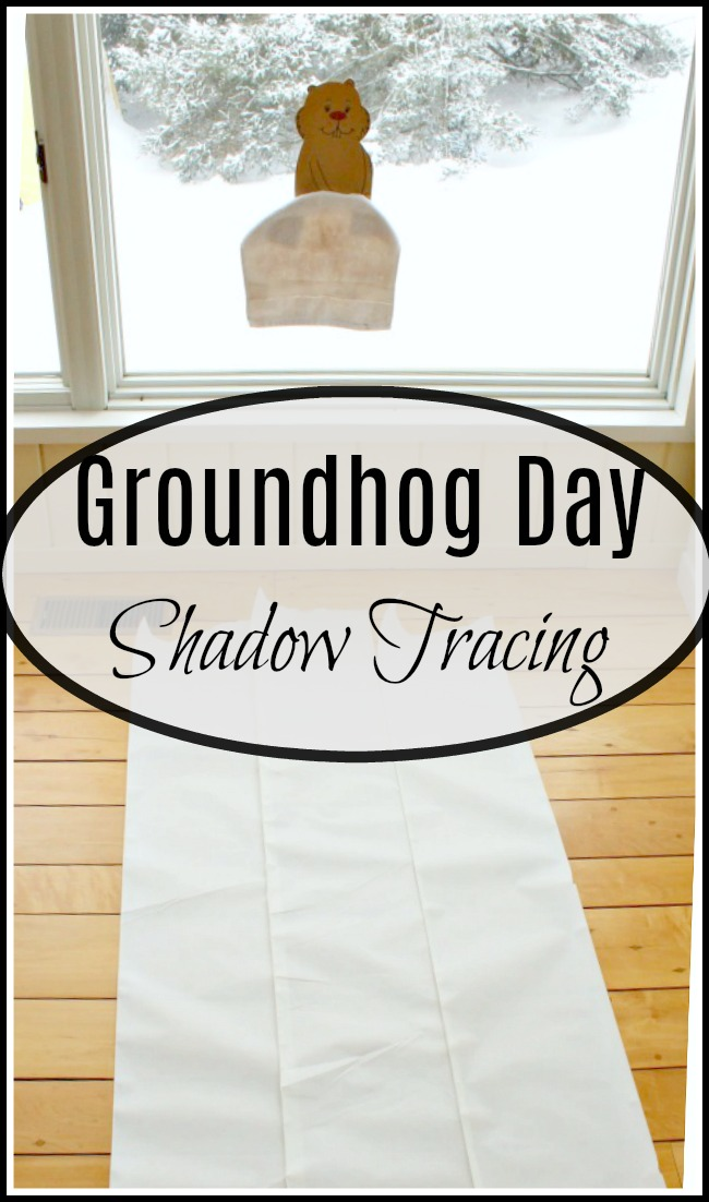The results of our simplge groundhog day activity for preschoolers! Such a fun science activity for kids! #science #preschool #groundhogday