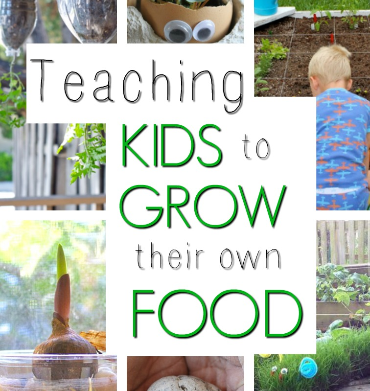 Teach kids to grow their own food this spring and summer! A fabulous kids activity to get them outside and learning in nature. Growing your own food is an important skill to teach! #howweelearn #springactivities #summeractivities #Scienceactivities #getoutside #childhoodunplugged #gardeningwithkids #growingfood #vegetablegarden