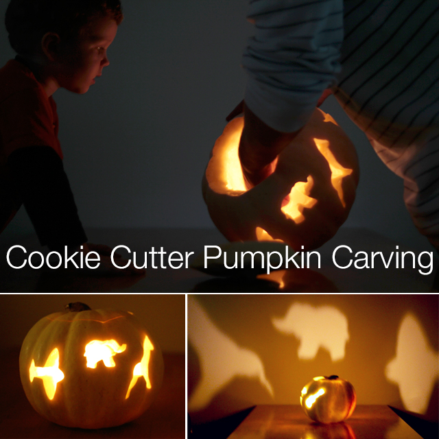 Turn any cookie cutter shape into your next pumpkin design. This pumpkin carving is so easy it's scary. Here is a list of more pumpkin decorating ideas that toddlers, preschoolers and kids of all ages can create! #howweelearn #pumpkincarving #pumpkindecorating #jackolantern # halloween #kidsactivities