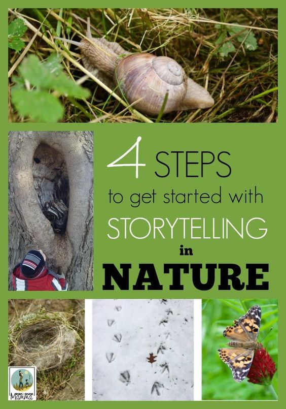 A collage of items found in nature: a snail, a tree, a butterfly, a nest and animal tracks