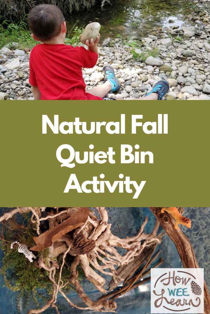 This fall quiet bin activity is so fun and perfect for kids! Gives the adults some much-needed quiet time too!