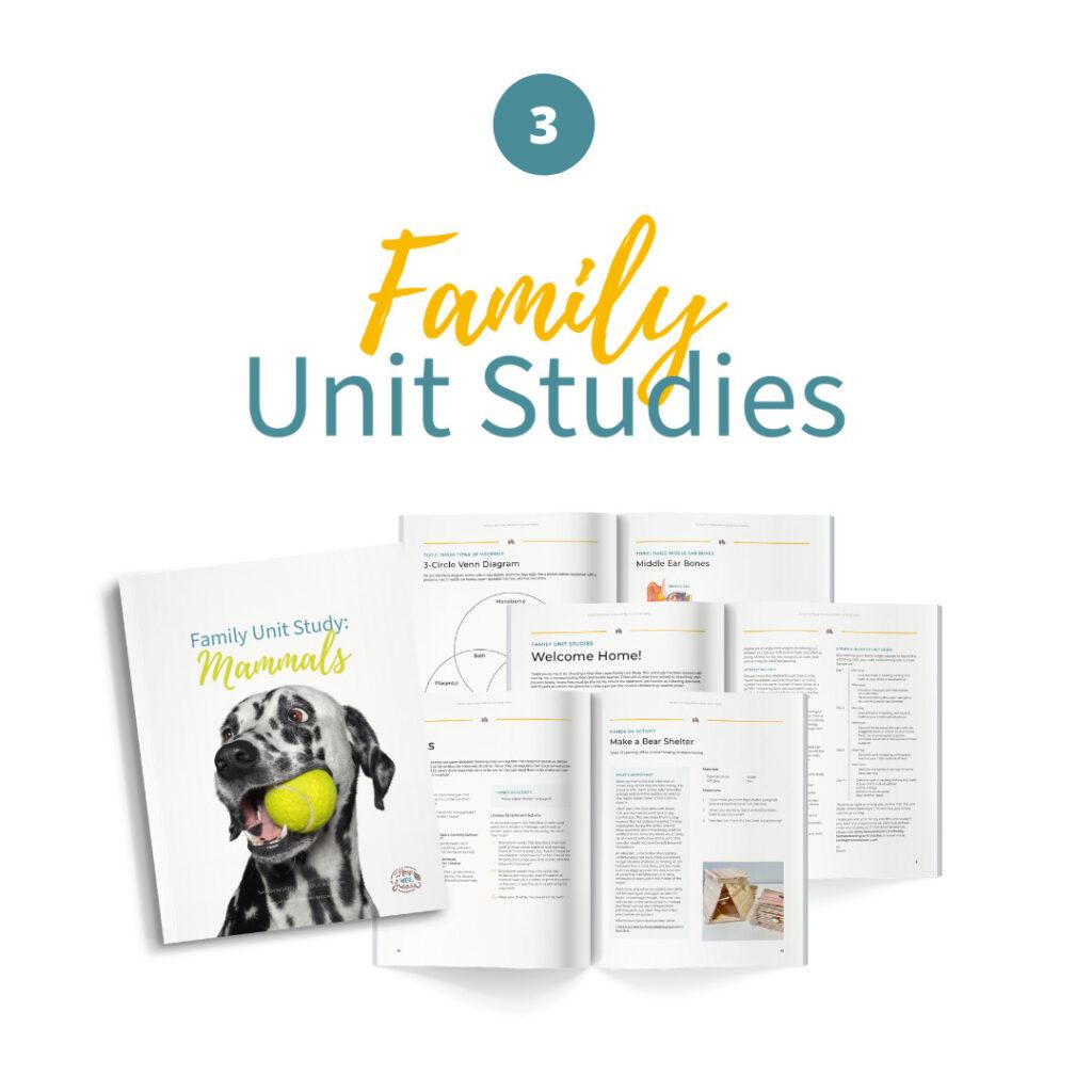 Step 3: Family Unit Studies